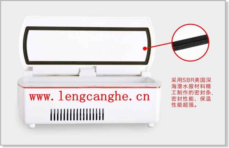 迪生便携式胰岛素冷藏盒BC-170A+图片展示