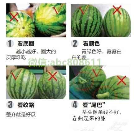 夏天到了西瓜吃不完怎么保存